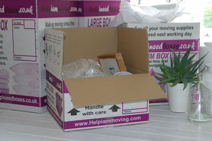 Removals boxes in - Victoria Station, the Houses of Parliament, Vauxhall Bridge, Pimlico